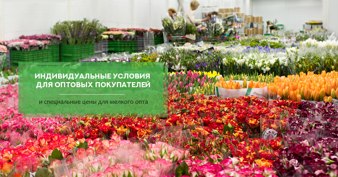 Оптом базы цветы в москва по ювао, цветы курске корзина